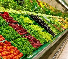 wisconsin food retail pest control, milwaukee food retail control, food retail pest services, food retail pest exterminator, food retail pest removal, food retail