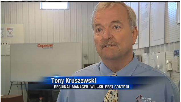 Wil-Kil Regional Manager Tony Kruszewski on local news.