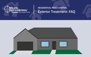 Exterior Pest Control Blog Preview