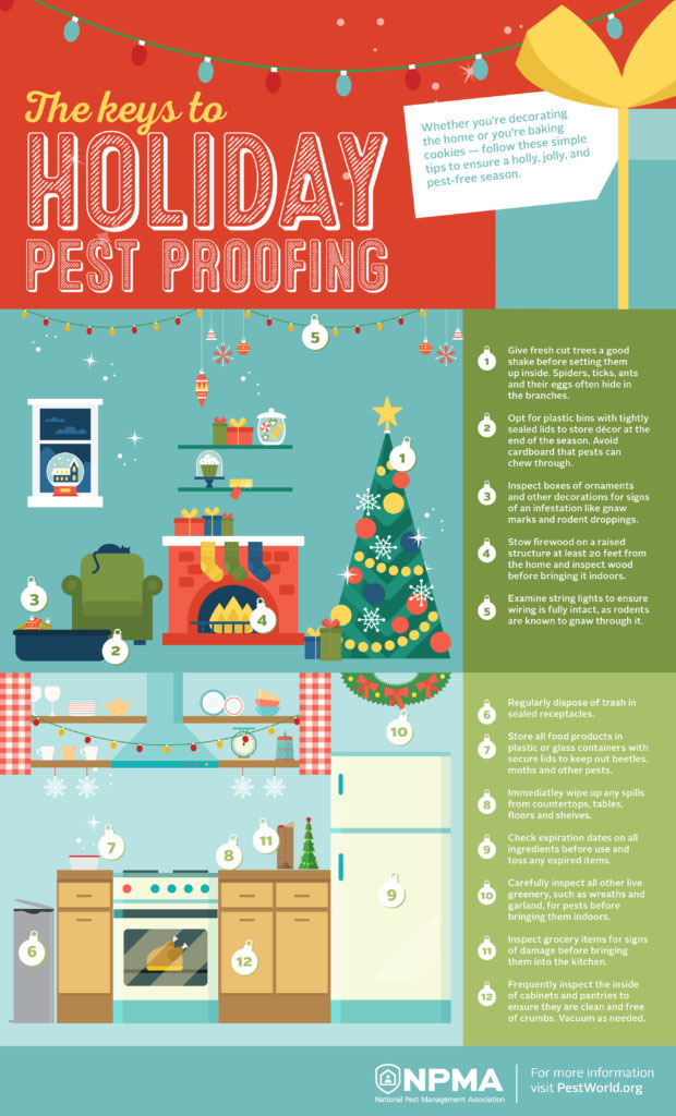 Holiday Pest Proofing Infographic